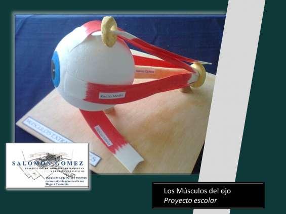 Fotos de Especialista en maquetismo y modelado artistico 6