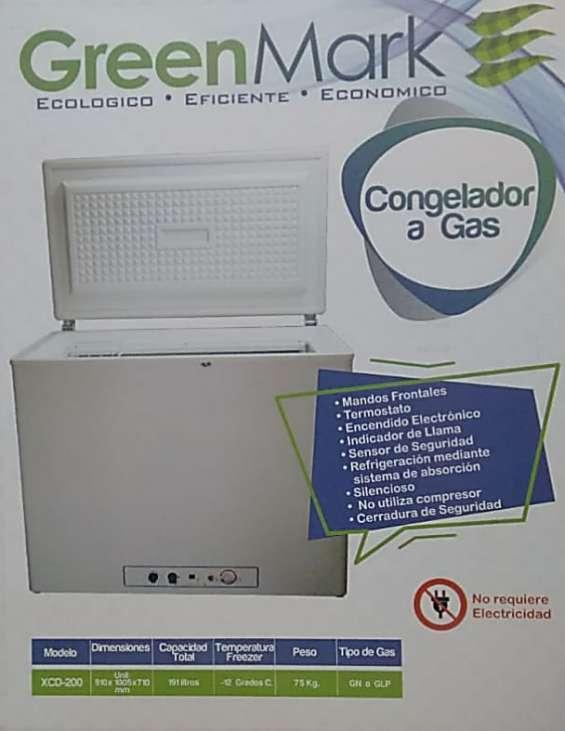 Fotos de Neveras y congeladores a gas natural o propano 4